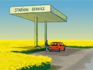 les-biocarburants